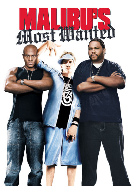 Malibu's Most Wanted on Netflix USA
