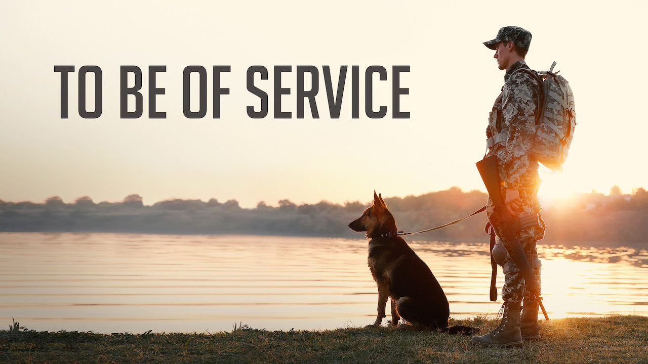 To Be of Service on Netflix USA