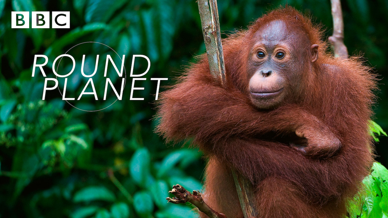 Is Round Planet On Netflix Where To Watch The Documentary New On Netflix Usa Величайшее путешествие на земле / round planet (2016). is round planet on netflix where to