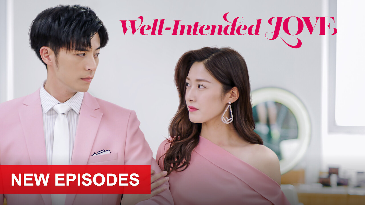 Well-Intended Love on Netflix USA