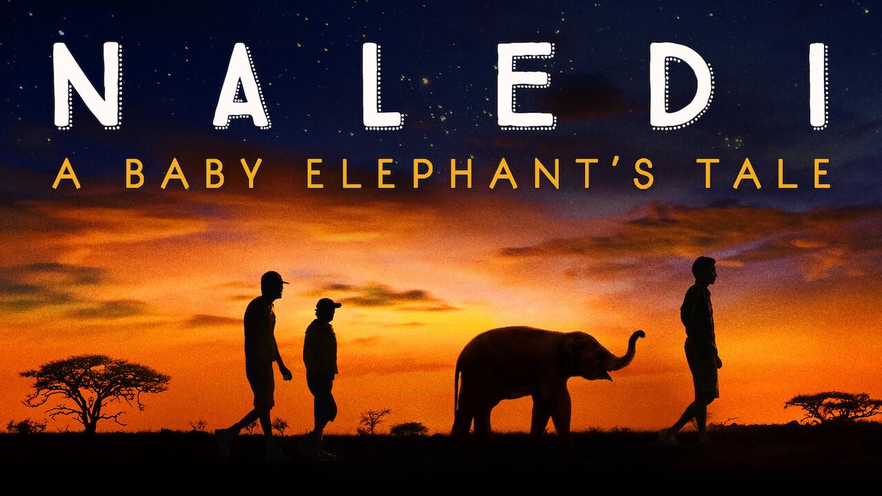 Naledi: A Baby Elephant's Tale on Netflix USA
