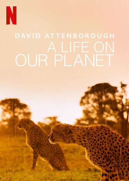 David Attenborough: Une vie sur notre planète sur Netflix USA