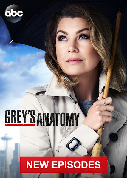 Grey's Anatomy on Netflix USA
