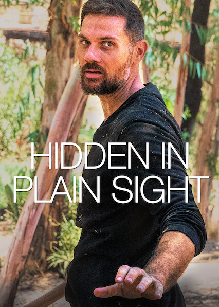 Hidden in Plain Sight on Netflix USA
