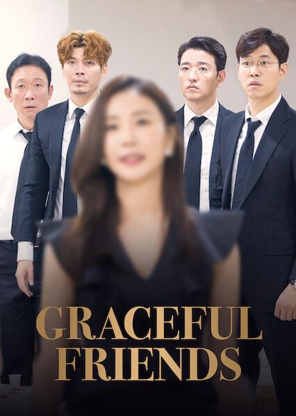 Graceful Friends sur Netflix USA